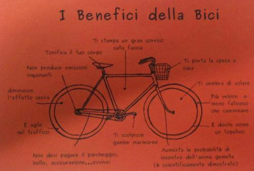 Benefitbici